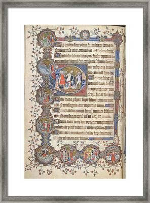 King With Disputing Fool Framed Print