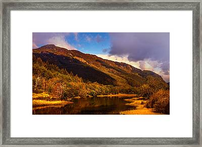 Kingdom Of Nature. Scotland Framed Print by Jenny Rainbow