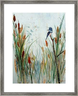 Kingfisher Dragonflies And Cattails Framed Print by Susan Duda