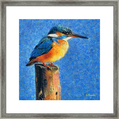 Kingfisher The King Framed Print by George Rossidis