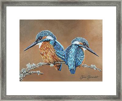 Framed Print featuring the painting Kingfishers by Jane Girardot