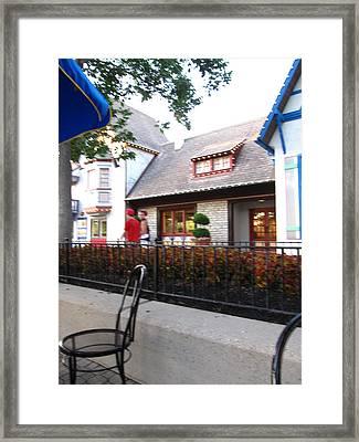 Kings Island - 121229 Framed Print by DC Photographer
