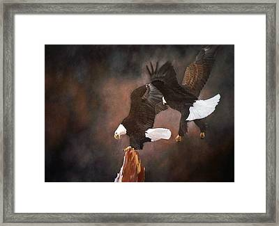 Kings Of The Sky Framed Print by Jean Yves Crispo