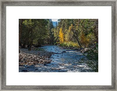 Kings River 1-7813 Framed Print