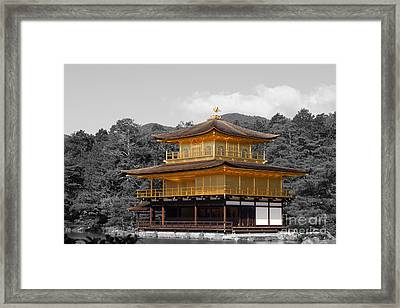 Kinkaku-ji Framed Print by Cassandra Buckley