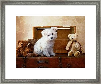 Kip And Friends Framed Print