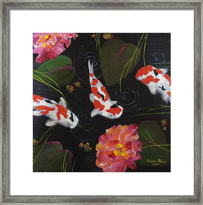 Kippycash Koi Framed Print