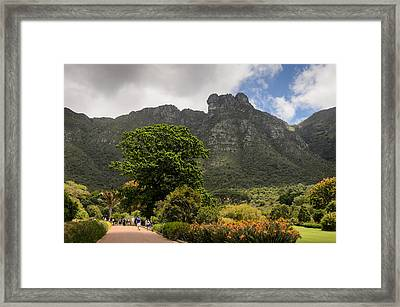 Kirstenbosch Framed Print