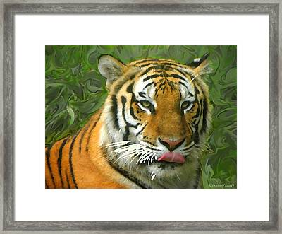 Framed Print featuring the photograph Kisa Painted by Sandi OReilly