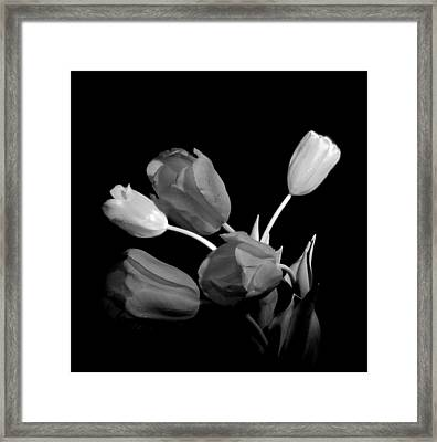 Kiss Of Spring Framed Print by Susan Duda