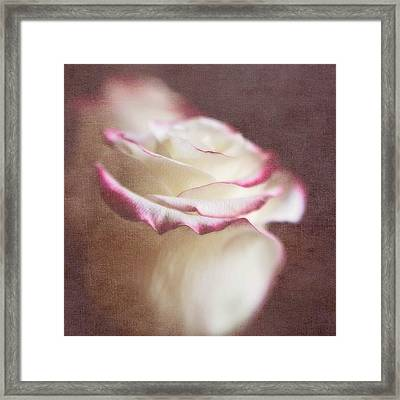 Kissed With Love #love #rose Framed Print