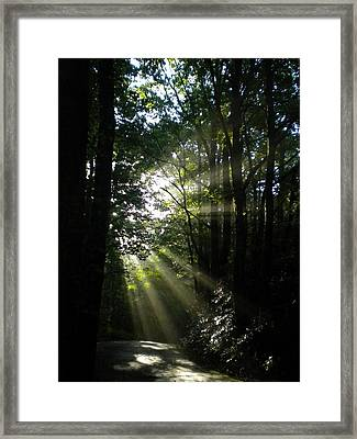 Framed Print featuring the photograph Kisses From Heaven by Diannah Lynch