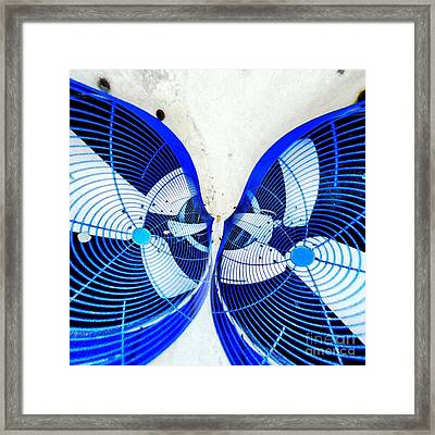 Kissing Fans Framed Print by Amy Cicconi