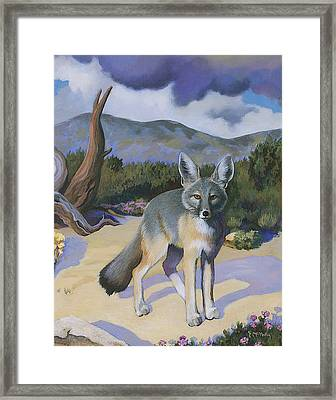 Kit Fox Framed Print