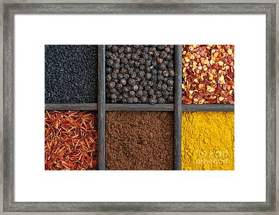Kitchen Spices Framed Print