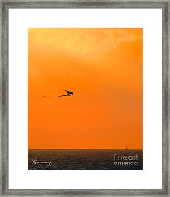 Kite-flying At Sunset Framed Print