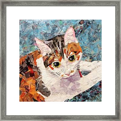Kitkat Framed Print