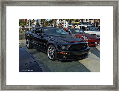 Kitt 2008 Framed Print by Tommy Anderson
