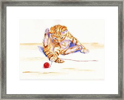 Kitten Interrupted Framed Print