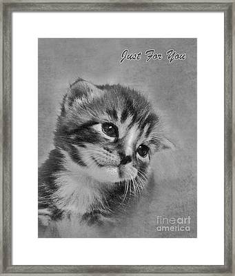 Kitten Just For You Framed Print