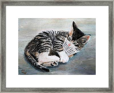 Kitten With Birdie Framed Print