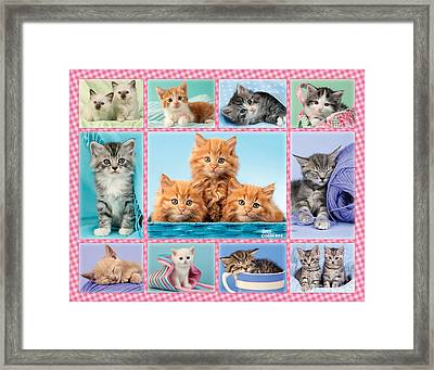 Kittens Gingham Multi-pic Framed Print