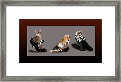 Kittens In Designer Ladies Shoes Framed Print by Regina Femrite