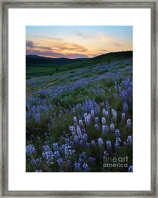Kittitas Valley Spring Framed Print by Mike  Dawson