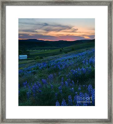 Kittitas Valley Sunset Framed Print by Mike  Dawson