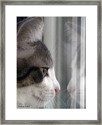 Kitty Cat Reflection Vert Framed Print by Lorrie Bedore