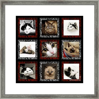 Kitty Cat Tic Tac Toe Framed Print
