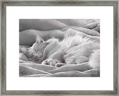 Kitty In The Covers Framed Print
