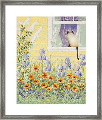 Kitty In The Window Framed Print by Lynn Bywaters