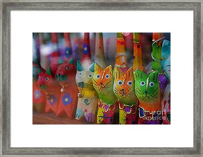 Framed Print featuring the photograph Kitty Kitty  by John S