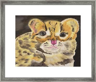 Peek A Boo Kitty Framed Print