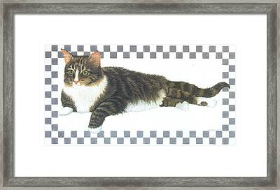 Kitty Framed Print by Sally  Evans
