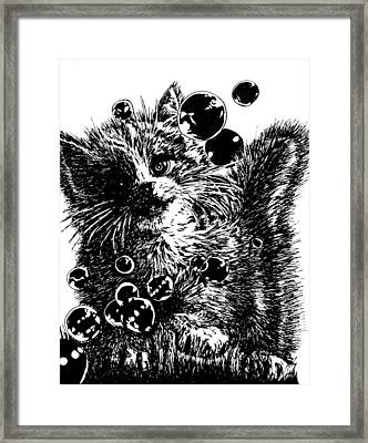 Kitty Framed Print by Shabnam Nassir