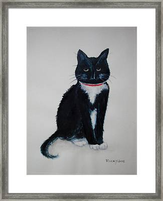 Kitty - Painting Framed Print by Veronica Rickard