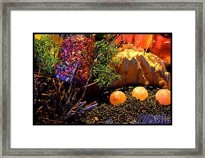 Kiva Mountain Eco Medicinals Framed Print by Susanne Still