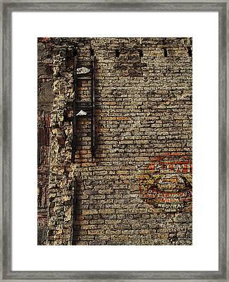 Kiwi Boot Polish Framed Print by David Blank