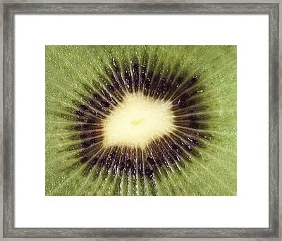 Kiwi Cut Framed Print