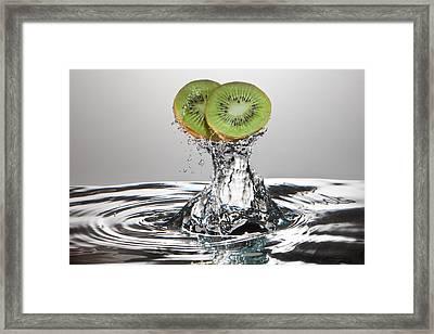 Kiwi Freshsplash Framed Print by Steve Gadomski