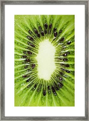 Kiwi Slice Framed Print by Chris Knorr