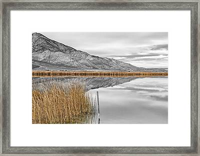 Klondike In Fall Framed Print