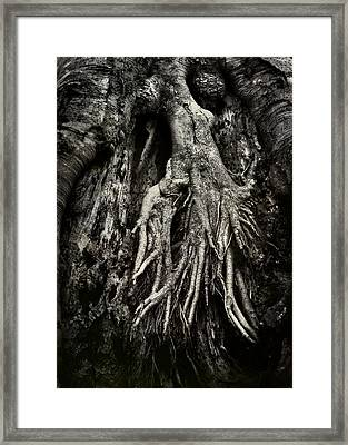 Kneeling At The Feet Of The Green Man Framed Print