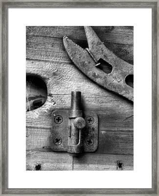 Knick-knack Framed Print by Tom Druin