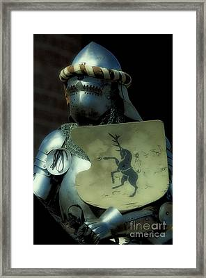 Knight 9 Framed Print by Bob Christopher