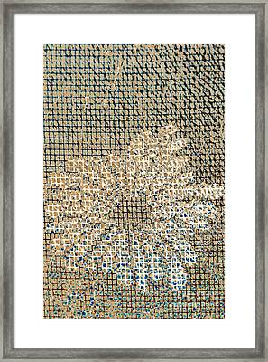 Framed Print featuring the photograph Knit Net Flower 1 by Darla Wood