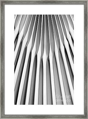 Knives II Framed Print by Natalie Kinnear