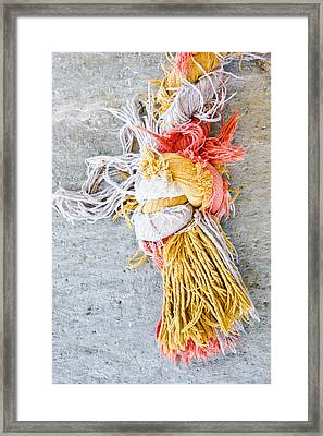 Knot Framed Print by Tom Gowanlock